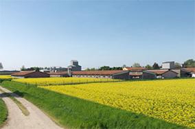 campagna agricola lodigiana-caseificio zucchelli